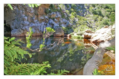 Crystal Pools Hike – Kogelberg Biosphere