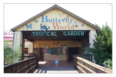 Butterfly World – Klapmuts