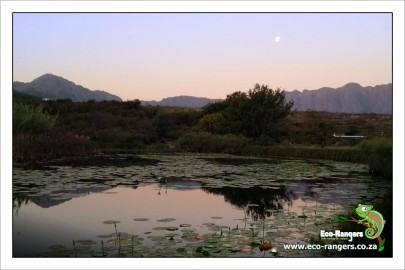 moon-rise-over-helderberg-nature-reserve